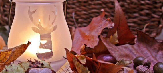 Hyggelig efterårsstemning med kastanjer